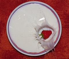 Splish Splash (Skley) Tags: photography photo milk strawberry foto fotografie creative picture commons cc creativecommons bild licence milch erdbeere erdbeeren kreativ lizenz skley dennisskley
