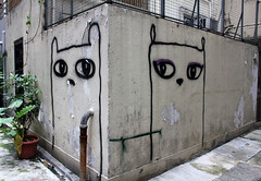 Double Kitty Wall Spread (cowyeow) Tags: china street old urban cats art texture wall corner cat asian fun hongkong grey graffiti weird eyes alley funny asia peeling paint painted cartoon gray central chinese creative double spraypaint 香港 midlevels kowloon funnychina funnyhongkong