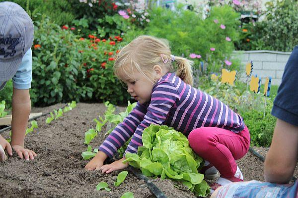 Kind im Kräutergarten