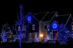Christmas Showcase (hpaich) Tags: christmas blue holiday festive lights newjersey nj monmouthcounty merry holmdel