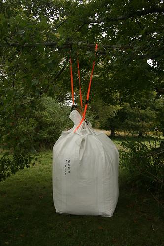Big bag of corn