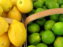 Lemons and Limes (Universal Pops (David)) Tags: food green cooking kitchen yellow fruit virginia lemon basket produce citrus lime bitter clarksville tang 2011 lakefest mecklenburgcounty