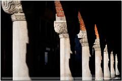 seven paces, seven faces (guido ranieri da re: L'Aquila is waiting for me?) Tags: nikon shadows faces ombre porch sequence portici indianajones portico treviso sequences facce veneto sequenza sequenze d700 nonsonoglianniamoresonoichilometri guidoranieridare sevenpacessevenfaces