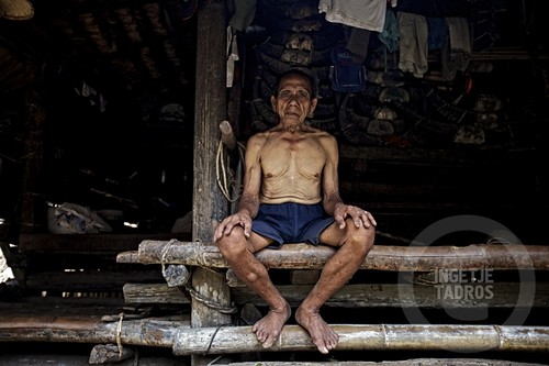 Family man-Sumba_201113577A