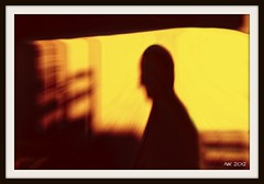 I See a Little Silhouette Of a Man (noam koren) Tags: nyc shadow brown sun abstract man art window silhouette yellow ps frame 2012 nk d300 queenbohemianrhapsody semipainting psasbrush