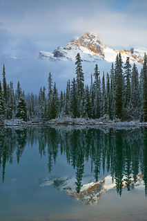 Cathedral Mountain Reflected in Lake O'Hara