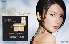 COFFRET D'OR -2008.03 (柴咲コウ)