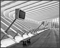 Calatrava Departure Time (Bert Kaufmann) Tags: lines station architecture canon bench concrete design vanishingpoint blackwhite belgium belgique gare zwartwit curves belgi trainstation calatrava transparency vanishing departure depth glas luik santiagocalatrava architectuur beton lige lijnen bankje wallonie vertrek lttich staal vertrekhal verdwijnpunt canoneos400d guillemains ligeguillemains ligeguillemainsstation