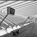 Calatrava Departure Time thumbnail