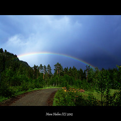 Rainbow (nora2810) Tags: colour nature beautiful norway forest norge rainbow lier skogen buskerud fujifilmfinepixs9500 garsj