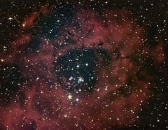 The Rosette Nebula in Monoceros 16 January 2012 (BudgetAstro) Tags: nikond70 dss ngc2244 rosettenebula deepskystacker Astrometrydotnet:status=solved Astrometrydotnet:version=14400 caldwell49 caldwell50 Astrometrydotnet:id=alpha20120199680141