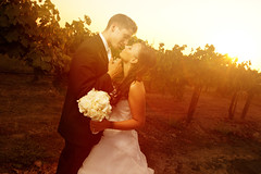 Ethan & Tristen Wedding at Ponte Family Estate Winery in Temecula
