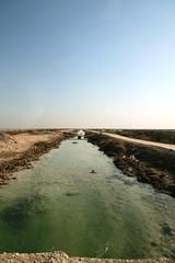 Effluent Channel from the Basrah Fertiliser Plant, Iraq