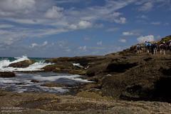 IMG_5936.jpg (Christoph Boddem) Tags: beach walking rocks hiking swb catherinehillbay cavesbeach frazerbeach daywalk redochrebeach sydneybushwalkers timberbeach cathohillbay
