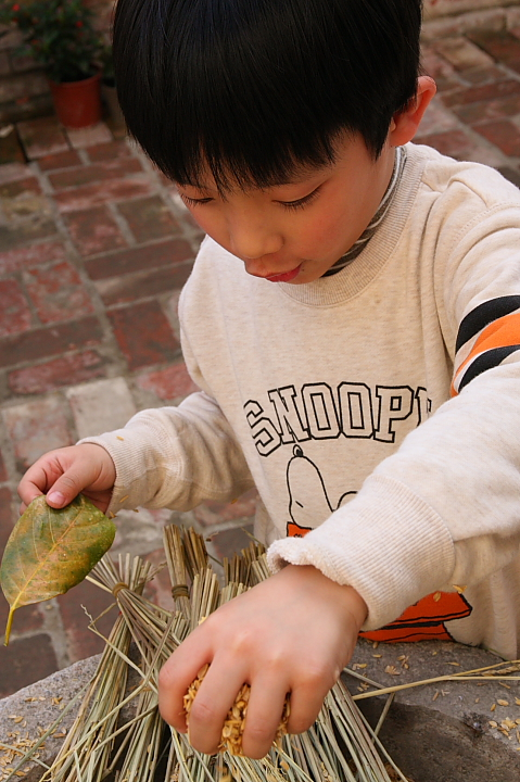台南後壁菁寮稻稻來0013