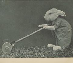 Four Little Bunnies 06 (ja450n) Tags: bunnies easter harry rabbits whittier 1935 frees harrywhittierfrees