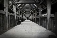 Promenade dans le Kappelbrücke à Lucerne - Walk in the Kappelbrücke in Luzern (fredo f) Tags: bridge schweiz switzerland suisse walk luzern promenade pont lucerne kappelbrücke