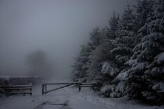 Snow At Last!