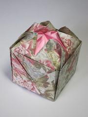 Flowery Box (Pentadactyl Mammal) Tags: flower origami petal cube universal base artisbellus