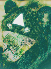 evolve (TALON WOLF) Tags: abstract art design triangle graphic space alien lion surreal manipulation aliens