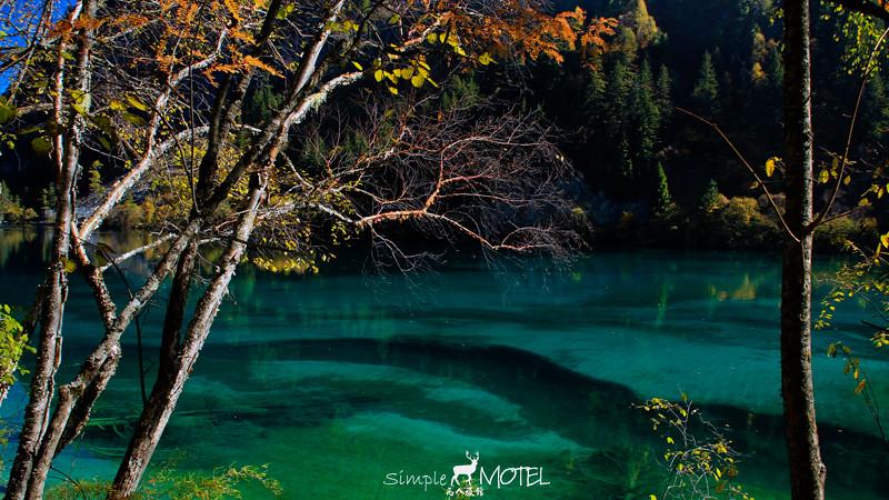 樹正群海IMG_0527