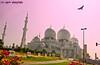 Glimpse of Sheikh Zayed Grand Mosque (ashrafali photography) Tags: dubai uae abudhabi unitedarabemirates masjid grandmosque canoneosdigital almasjid asquarephotography costliestmosque glimpseofsheikhzayedgrandmosque