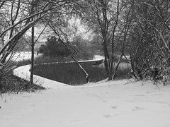Neige Acignolaise du 05 01 2012 (Daniel.35690) Tags: lac bretagne nb neige glace 2012 youtube acigné blinkagain