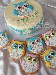not a patch on yewhoo (The Whole Cake and Caboodle ( lisa )) Tags: pink blue newzealand green cakes cookies yellow cake lemon cookie sewing betty handpainted owl patchwork applique whangarei fondant caboodle thewholecakeandcaboodle