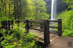 South Bridge (Ian Sane) Tags: park bridge green fall nature water beauty oregon silver ian foot spring state south images falls trail sane sublimity