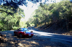 Miata looks ahead (Mr Pika) Tags: convertible mazda miata mx5 roadster forestroad eunos redconvertible popupheadlights redsportscar
