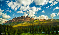 Castle Mountain (thejackluo) Tags: mountain canada tree nature landscape nikon scenery colorful scenic vivid ab wideangle alberta banff 1855mm pinetrees castlemountain wideanglelens 2013 1855mmvr 1855mmf3556vr epiclight epicclouds wwwweixiluotk
