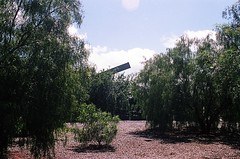01750019-84 (jjldickinson) Tags: sky tree longbeach oil grasshopper olympusom1 noddingdonkey petroleum pumpjack oilpump fossilfuels petrochemicals fujicolorsuperiaxtra400 willowspringspark tiffen62mmsky1a tokinasd35200mmf456 longviewpoint roll495o2