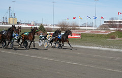 Mozartsplace qualifying, April 30, 2016 (Taylor Racing) Tags: red racing ponder harness shores pei charlottetown mozartsplace