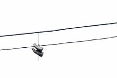 Hanging Shoes (Guilherme Nicholas) Tags: street brazil blackandwhite white black wire nikon shoes sopaulo streetphotography pretoebranco minimalist guilhermenicholas