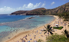 (Mitchell Lafrance) Tags: travel vacation usa holiday beach hawaii interesting oahu pacificocean hanaumabay 2014
