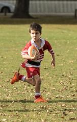 20160514_8822_7D2-200 Ethan is away again (johnstewartnz) Tags: canon eos rugby ethan grandson grandchild 70200 hornby 70200mm 7d2 ripparugby 7dmarkii canonapsc hornbrrfc hornbyvsydenham