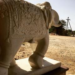 marble-elephant-ashoka-palace-udaipur (uttam bhaskar) Tags: udaipur iphonephoto iphonepic iphone6 iphoneonly seoudaipur