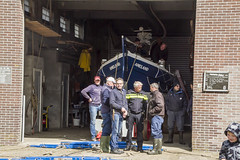 2016-Ameland007 (Trudy Lamers) Tags: wadden ameland eiland paarden reddingsboot reddingsactie