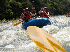 Rafting 9-May-2016 (Boquete Outdooor Adventures) Tags: travel whitewater tour rafting panama whitewaterrafting centralamerica boqueteoutdooradventures panamarafting panamatours chiriquiviejoriver