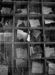 Materia Medica, Sir Hans Sloane Collection (elisecavicchi) Tags: uk england reflection glass museum wooden box britain united great hans kingdom collection tray british sir medica assortment materia sloane