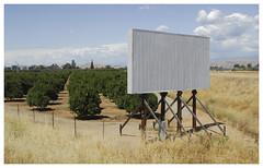 Central California_0266 (Thomas Willard) Tags: california central billboard citrus agriculture