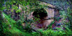 Lennox Bridge (evangelique) Tags: old bridge blue mountains heritage wet water stone creek waterfall rainforest rocks bluemountains rainy greenery ferns convict raining brookdale lennox glenbrook blaxland lennoxbridge mitchellspass