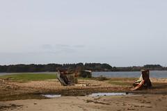 IMG_8992 (MariaLardi) Tags: field project landscape site mud trails dorset poole studland oilwells shellbay pooleharbour furzeyisland designdevelopment arnenaturereserve wytchfarmoil