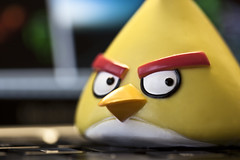 """I said, quit looking at me!!"" (Issa Fakhro) Tags: macro colors canon toys photography photo skne hilarious funny europe dof sweden bokeh lol 100mm angry haha scandinavia malm rofl angermanagement angrybirds followmeontwitterissafakhro"
