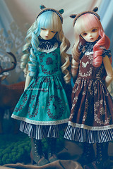 Chocolate Forest (Moonteahouse) Tags: doll may bjd abjd ayatori maneki bluefairy tinyfairy mayv moonteahouse