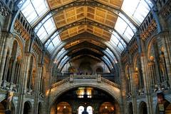 (victoriaamber) Tags: uk england london nikon kensington naturalhistorymuseum nhm