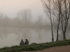 complicit (LILI 296....!!!) Tags: france automne lac arbre brouillard chemin brume matin canonpowershotg12