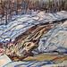Freezing Up - Bog Falls, oil on canvas. Artist: Nancy Brossard