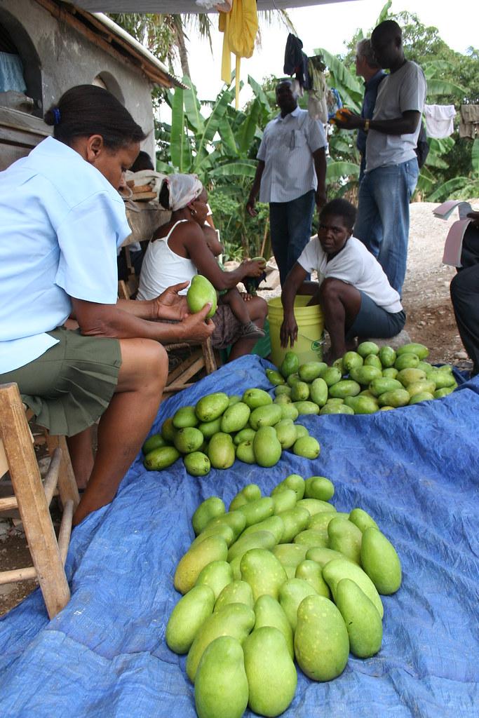 Etalage mangues