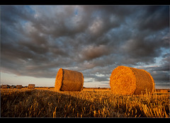 The crop collection..... (Chrisconphoto) Tags: autumn sky wales clouds canon harvest sigma hay bales pembrokeshire stdavids latesummer chrisconway